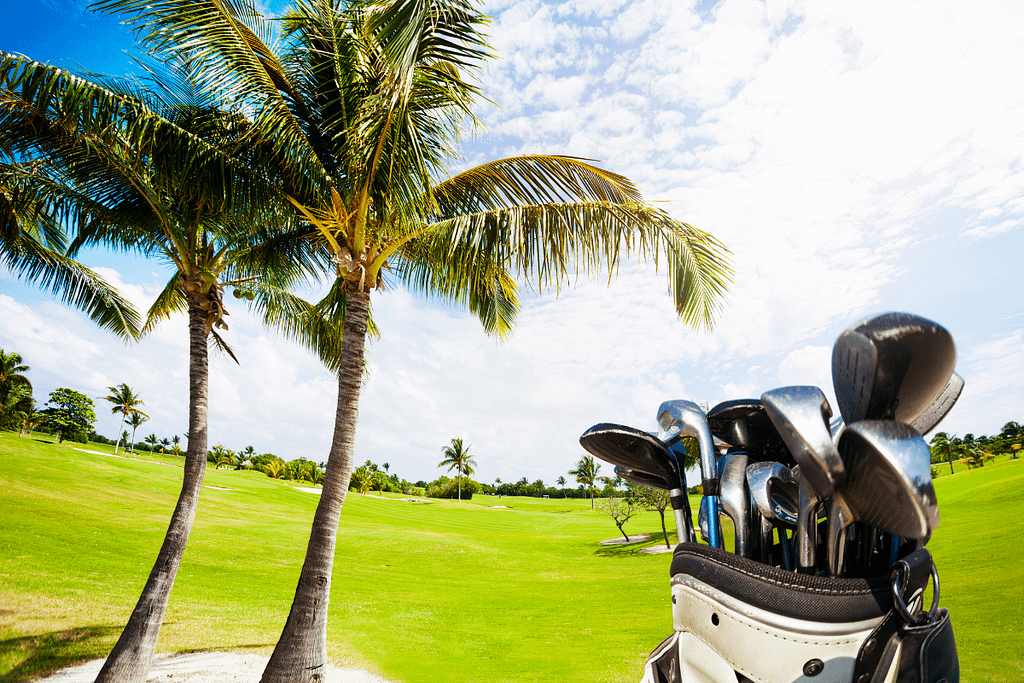 The best hybrid golf clubs for high handicappers deliver the much-needed consistency to help improve your game.
